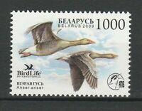 Belarus 2009 Birds MNH stamp