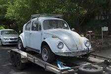 Beetle Collector Cars (1940-1970)