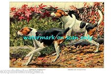 1919~English and American Foxhound Dogs~ New Large Note Cards
