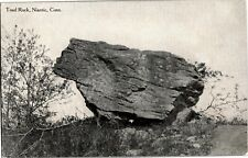 View of Toad Rock, Niantic Ct Vintage Postcard A74
