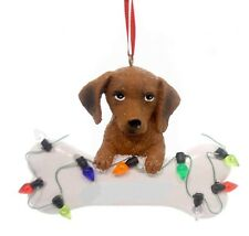 Kurt Adler RED DACHSHUND Puppy with Bone Personalizable Christmas Ornament