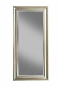 """Full Length Leaner Mirror, Champagne Silver, 65""""x31"""", By Martin Svensson Home"""