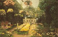Postcard Chrysanthemum Show Missouri Botanical Garden