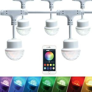 Led Bulb String Lights for Christmas Controlled Sync to Music,Bluetooth