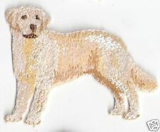 "3"" Golden Retriever Dog Breed Embroidery Patch"
