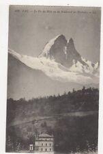 Pau Pic du Midi Vu du Boulevard Des Pyrenees Vintage Postcard France 057a