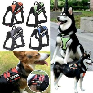 Service Pet Harness Reflective No-Pull Walk Vest w/ Handle In Training EMOTIONAL