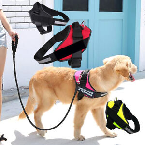 Dog Harness Leash Set No Pull Outdoor Walking Small Pet Puppy Vest Patches XS L
