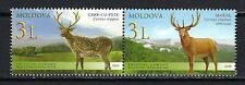Moldavie 2008 Faune sauvage cerfs Yvert n° 545 à 546 neuf ** 1er choix