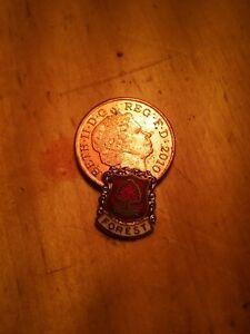 nottingham forest badge