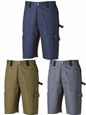 Dickies Cotton Big & Tall Shorts for Men