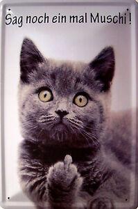 Sag noch ein mal Muschi ! Katze Blechschild Schild Tin Sign 20 x 30 cm PC300/311