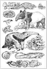 Japanese Postcard: Anteater, Aardvark, Bird, Squid, Cat, Lizard - Higuchi Yuko