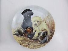 Field Puppies A Perfect Set Labrador Retrievers Collector's Plate Lynn Kaatz