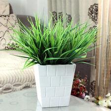 Comfortable Home Decor Evergreen Grass Centerpiece Lively Plant Vibrant Hot