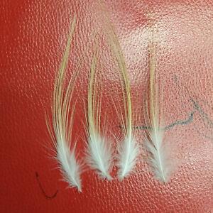 10/50/100pcs 4-8 inch/10-20 cm Golden Heron Silk Feathers Decorative Accessories