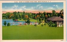 near WALHALLA, South Carolina SC  Scene at OCONEE STATE PARK  ca 1940s  Postcard