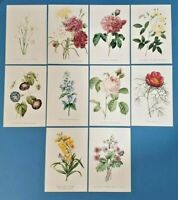 50 NEW Flowers (Set 3) Postcards 10 designs Postcrossing Postcardsofkindness