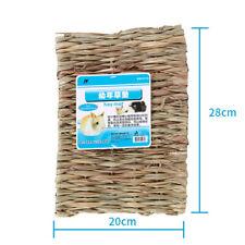 Small Animal Rabbit Rat Hamster 28x21cm Grass Chew Mat Breakers Toy House Pad