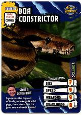 Boa Constrictor #142 Deadly 60 TCG Trade Card (C377)