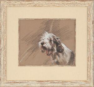 'Jilly' A Petit Basset Griffon Vendeen Original pastel sketch by Paul Doyle