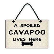 Cavapoo Dog Fun Gift A Spoiled Cavapoo Lives Here Plaque/Sign 695