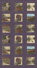 WI Shop Hop 2017  Holly Taylor MODA Fabric by the Panel 6670 17 purple nature