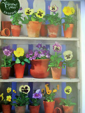 Pansies in Terracotta pots.... greeting card