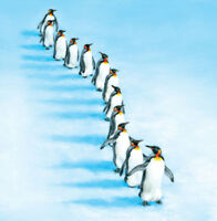 Charity Christmas Cards Waddling Penguins Gloss Finish - Pack 5