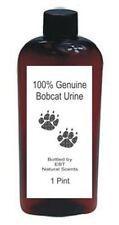 Ebt Scent Company 1 Pint Genuine Bobcat Urine! *Peddling Pee Since 1986!*