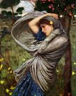 Print - Boreas - John William Waterhouse •  1903