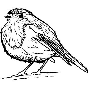 'Cute Robin Bird' Unmounted Rubber Stamp (RS015263)