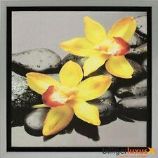 Deko-wandbilder mit Grafik & Druck von Orchideen-Dünger
