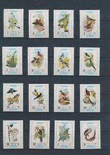 XC95100 Ajman animals fauna flora birds fine lot MNH