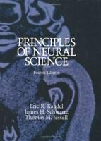 Principles Of Neural Science  - by Kandel