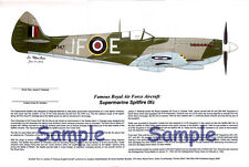 RAF Spitfire signed by the Pilot, Aviation Art, Ernie Boyette