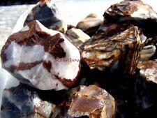 PANTHER JASPER - 1 Lb Lot - Great for Tumbler / Polisher - Cabbing Rough Rock