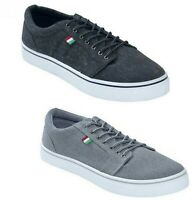 Mens Big Size Trainers D555 Canvas Shoes Lace up in Black & Grey Colours 12-15