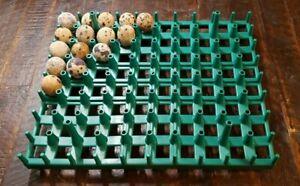 Chukar Partridge / Jumbo Quail Egg Stackable Tray for Cabinet Incubator CHUCK-80