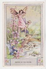 Rene Cloke Fantasy Collectable Artist Signed Postcards