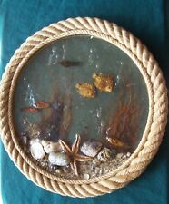 Nautical Wall Decoration Actual Sea creatures Size: 14 inches diameter