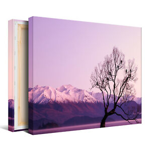 Black withered Tree with Purple Background Canvas Picture - Wall Art Print