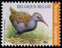 Belgien 2017 Nr. 4717 Fauna Wasserralle Vögel Familie Rallenvögel Ornithologie