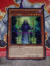 Carte Yu Gi Oh DRUIDE DRU SECTE SECRET MP14-FR133 x 3
