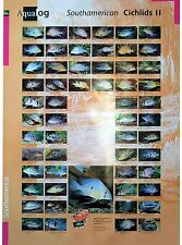 AQUALOG: Poster Cichlids 2 (Geophagus/Eartheaters) LAMINATED