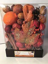 Pumpkin Harvest Spice 12 Ounce Highly Fragranced Potpourri NEW