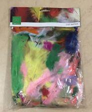 Mixed Feathers - Rainbow Mix 25gms Dreamcatchers Crafts AUSSIE SELLER