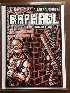 Teenage Mutant Ninja Turtles #1 One-Issue Micro Series Raphael 1985 Casey Jones
