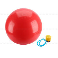 EXERCISE GYM YOGA SWISS 75cm BALL FITNESS AB ABDOMINAL SPORT WEIGHT LOSS W/PUMP