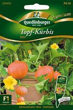 "Quedlinburger olla-calabaza ""Zora"" mini-Hokkaido ""peso 1 - 1,5 kg de semillas"